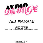 Play & Download Roots by Ali Payami | Napster