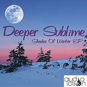 Shades Of Winter E.P. by Various Artists