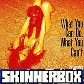 Play & Download What You Can Do, What You Can't by Skinnerbox | Napster