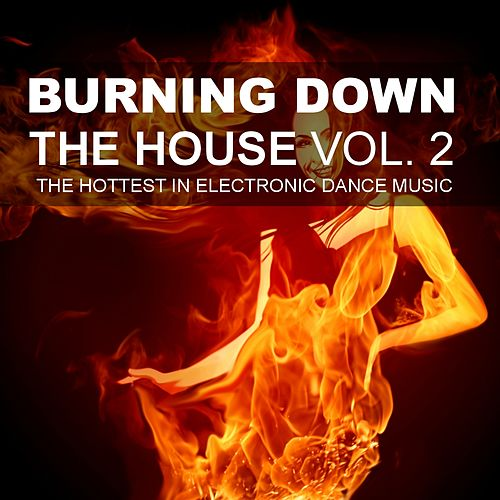 Burning Down The House, Vol. 2 - The Hottest In Electronic Dance Music by Various Artists