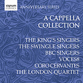 Play & Download The A Cappella Collection by Various Artists | Napster