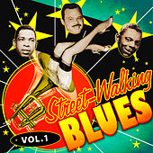 Street-Walking Blues, Vol. 1 by Various Artists