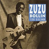 Texas Bluesman by Zu Zu Bollin