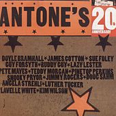 Play & Download Antone's 20th Anniversary by Various Artists | Napster