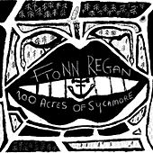 Play & Download 100 Acres Of Sycamore by Fionn Regan | Napster