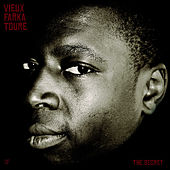 Play & Download The Secret by Vieux Farka Touré | Napster