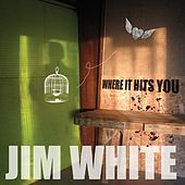 Where It Hits You by Jim White