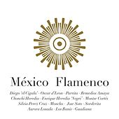 México Flamenco by Various Artists