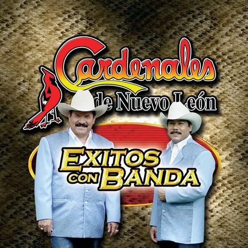 Play & Download Exitos Con Banda by Cardenales De Nuevo León | Napster