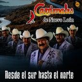 Play & Download Desde El Sur Hasta El Norte by Cardenales De Nuevo León | Napster