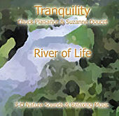 River Of Life by Suzanne Doucet & Chuck Plaisance