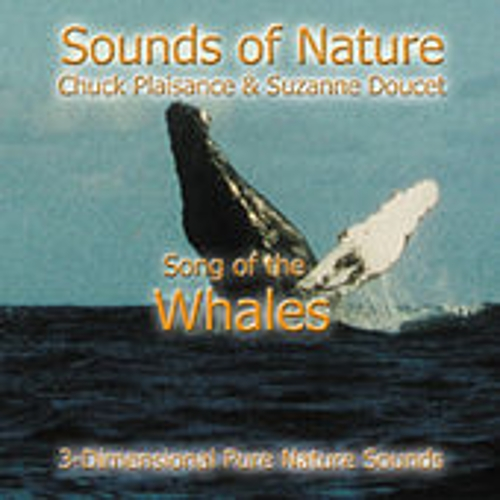 Play & Download Song Of The Whales by Suzanne Doucet & Chuck Plaisance | Napster