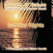 Summer Nights by Suzanne Doucet & Chuck Plaisance