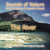 The River by Suzanne Doucet & Chuck Plaisance