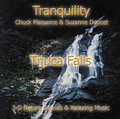 Tijuca Falls by Suzanne Doucet & Chuck Plaisance