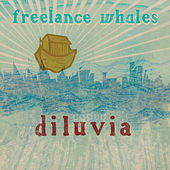 Play & Download Diluvia by Freelance Whales | Napster