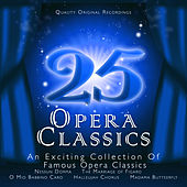 Play & Download 25 Opera Classics by Various Artists | Napster