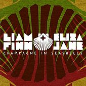 Champagne in Seashells by Liam Finn