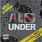 Play & Download Nico Canada Presenta A lo Under Vol. 1 Perreo Perreo by Various Artists | Napster
