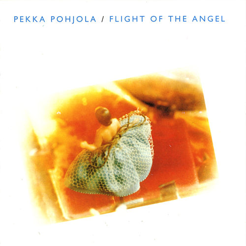 Flight of the Angel (re-issue) by Pekka Pohjola