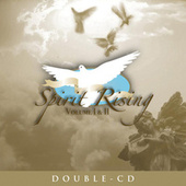 Spirit Rising Vol. 2 by Various Artists