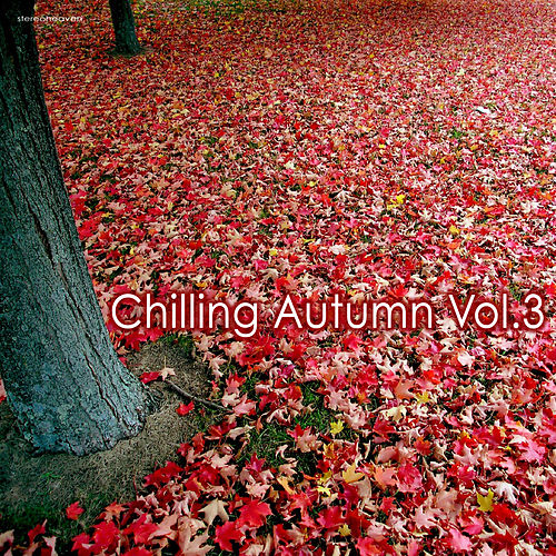 Play & Download Chilling Autumn, Vol. 3 by Various Artists | Napster