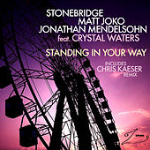 Play & Download Standing In Your Way by Stonebridge | Napster
