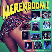 Merenboom! by Various Artists