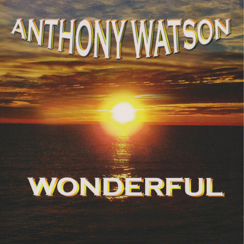 Wonderful (Digital Version) by Anthony Watson