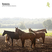 Pony - No Hassle Versions by Tosca