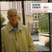 Beautiful Day by David Essex