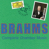 Play & Download Brahms: Complete Chamber Music by Various Artists | Napster