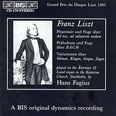 Liszt: Organ Music by Hans Fagius