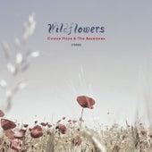 Wildflowers by Connie Price & Keystones