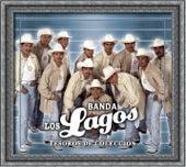 Play & Download Tesoros De Coleccion by Banda Los Lagos | Napster