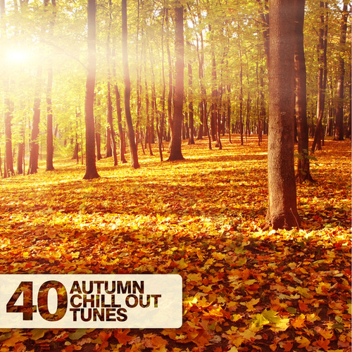Play & Download 40 Autumn Chill Out Tunes by Various Artists | Napster
