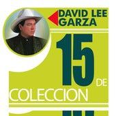 15 De Coleccion by David Lee Garza