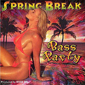 Play & Download Spring Break Bass Party by Various Artists | Napster