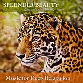 Play & Download Splendid Beauty: Classical Indian Flute & Violin by Music For Relaxation | Napster