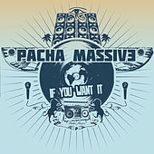 Play & Download If You Want it by Pacha Massive | Napster