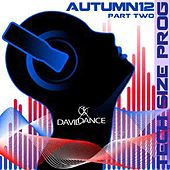 Tech Size Prog, Autumn 2012, Pt. 2 by Various Artists
