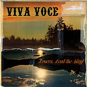 Play & Download Lovers, Lead The Way! by Viva Voce | Napster