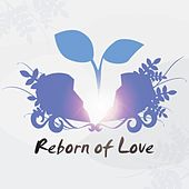 Play & Download Reborn of Love by Rabbit Tank | Napster