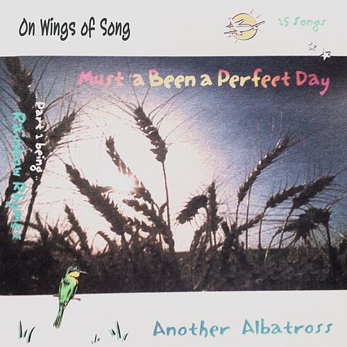 Play & Download Must 'a Been a Perfect Day by Another Albatross | Napster