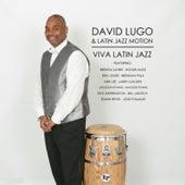 Viva Latin Jazz by David Lugo