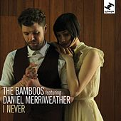 I Never (feat. Daniel Merriweather) by Bamboos