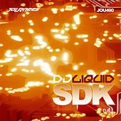 SDK - Single by DJ Liquid