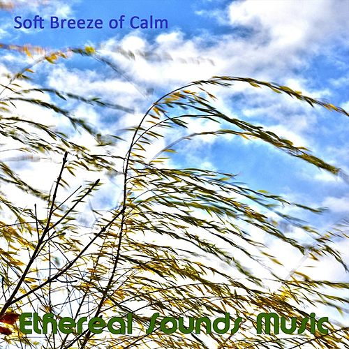 Soft Breeze of Calm by Ethereal Sounds Music