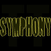 Symphony by Todd Terry