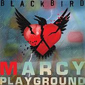 Play & Download Blackbird by Marcy Playground | Napster